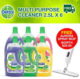 [Bundle of 6] 6 x Dettol Multi Surface Cleaner 2.5L! FREE Aurora Spray Mop worth $29.90