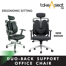 WELLSYS SD102 ERGONOMIC OFFICE CHAIR ★ DUAL-BACK SUPPORT ★ TWO PADDED SUPPORT
