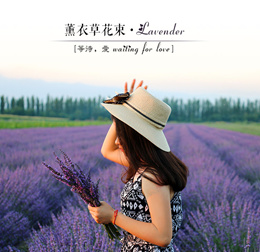 Yili dried lavender flowers real flowers immortalized bouquet decorated living room in addition to taste nerves aiding sleep girlfriend gifts