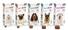 Bravecto Flea and Tick Chewable Tablet for Dogs and Spot-on Treatment for Cats of all sizes.