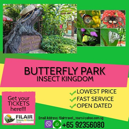 [Fil Air] Q10 BEST PRICE Butterfly Park and Insect Kingdom at Sentosa /E-TICKET AVAILABLE/OPEN DATE