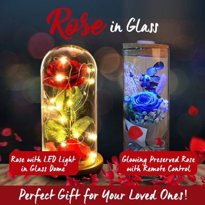 Valentines Day Flower Red Silk Rose LED Light with Fallen Petals in Glass Dome on a Wooden Base Deals for only S$39.9 instead of S$39.9