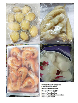 CNY Offer Fresh Frozen Abalone Premium Quality Abalone Sea Cucumber Fish Maw direct from Market