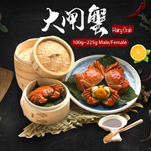 ★FREE SHIPPING★大闸蟹 Hairy Crab X 2pcs !! The best quality among all!!★BUY MORE SAVE MORE!!