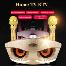 SD 306 Karaoke Owl Design Bluetooth Speaker with Two Wireless Microphone Mobile Wireless Karaoke Spe
