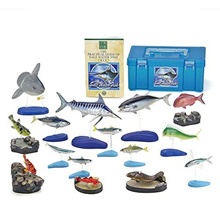 [iroiro] COLORATA Karorada Japan's sea water figure (stereoscopic picture book) fish real box [commentary / with stand] 15 kinds of food hygiene clear