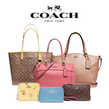 [COACH] 240 Type Women lanyard Wallet Bag Collection ♥