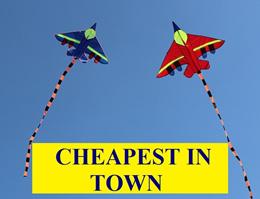 Restock 1 Nov Outdoor Cartoon kite for leisure Plane Fish Octopus Eagle - Free 90m line + reel.