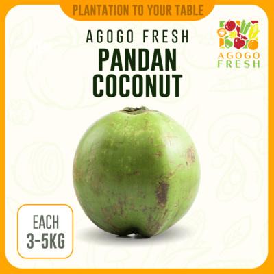 Pandan Coconut (3-5kg)