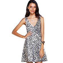 Stylish V-Neck Print A-Line Dress For Women