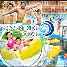 Adventure cove waterpark Eticket- Open Full day Ticket   水上探险乐园