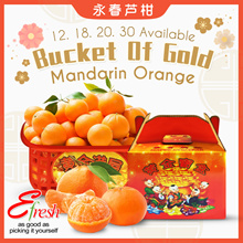 CNY Mandarin Oranges Yong Chun Eng Choon 永春芦柑 Gift Packs Delivery Available