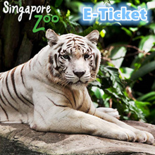 [ School Holiday Special ]  Singapore Zoo E-Ticket (Admission + Tram Ride) 新加坡动物园电子票 (包含游园车)