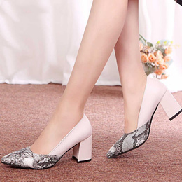 Women Pumps Toe Mid Heels Dress Work Comfortable Ladies Shoes Rough with Ankle Strap Thick Heel Squa