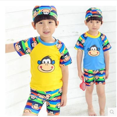 6b349260a31b0 Genuine new boys split swimsuit children swimwear baby swimwear big boy