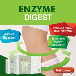 Xndo Enzyme Digest