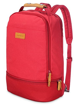 Amber  Ash Laptop Backpack for Business,College and Travel with Many Pockets, Water Resistant Bag f