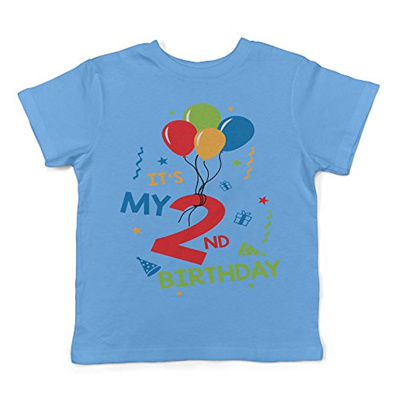 Lil Shirts Its My 2nd Birthday Toddler T Shirt