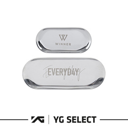 YG Entertainment Idol Goods Fan Products YG Select WINNER EVERYD4Y STEEL TRAY