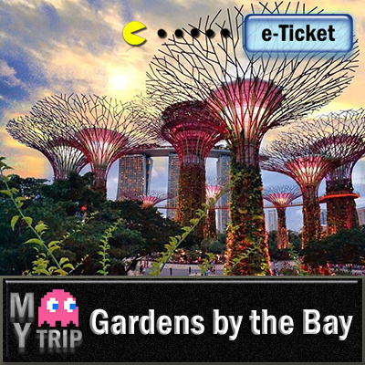 my tripgardens by the bay flower dome cloud forest e