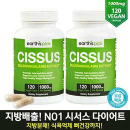 ◆지방타파! CISUSS DIET ◆ 해외직배송 얼스픽 시서스 가루 추출물 1000mg 120캡슐 2개 세트
