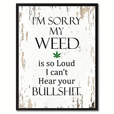 SpotColorArt Im Sorry My Weed is So Loud I Cant Hear Your BS Framed Canvas Art 13 x 17 Aqua