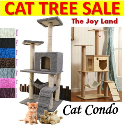 6541f3b927 Qoo10 - KITTEN Search Results   (Q·Ranking): Items now on sale at qoo10.sg
