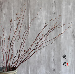 Birch branches decorated with natural dry branches 3 twig