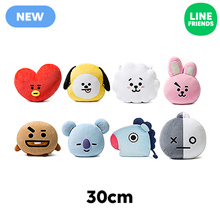 [LINE FRIENDS]BT21 30cm COUSHION