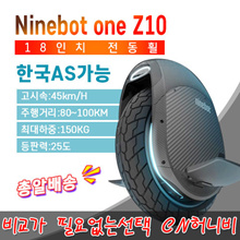 Ninebot one Z10 Nahnbo off-road electric unicycle