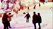 Snow City cheap ticket discount promotion Zoo Science centre Universal Studios Aquarium cable car