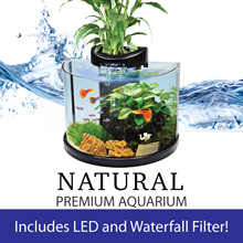 Tabletop Hydroponic Natural Premium Fish Tank (with LED Lights and Filter) 12L