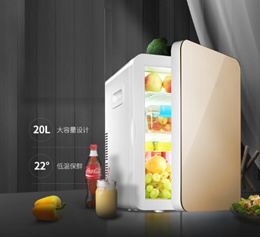 20L Portable Fridge for Car and Home Use