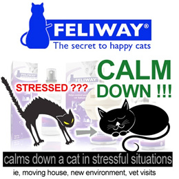 FELIWAY - secret to happy cats. Calm ur cat Get it comfy settle down in a new environment faster