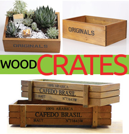 ◤WOODEN Vintage Box◥ Terrarium DIY Ideas ★ Container ♡ Wood Garden Planter ♡ Coaster
