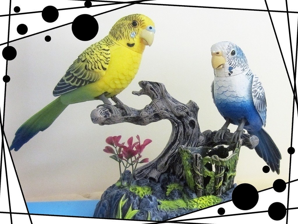 The cage bird sound control toys electric simulation will be called moving  singing and dancing can b