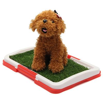 Qoo10 - Dog potty pad Puppy Mesh Toilet Indoor Dog Toilet Training ...