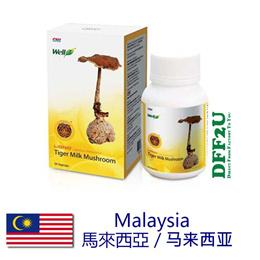 DFF2U Well3 Tiger Milk Mushroom - 30 Caps