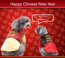 New Arrival ! ! ♥♥♥ CNY Pets Clothes Beds with freebies♥♥♥