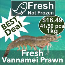 【Fresh Seafood】 - 【Direct from Fishery Port】 - 【To Your Doorstep】
