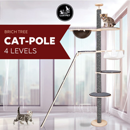 [LUXYCAT] ★PET product★ Cat-Pole Tower / Water proof / Fish or Peanut Type / UV Coating / Cat Player