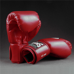 Thai Twins Boxing Gloves