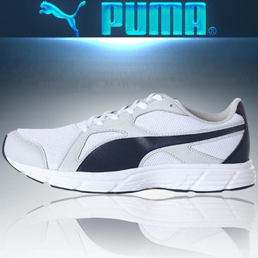 puma axis v4
