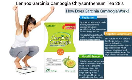Qoo10 Lennox Garcinia Tea Diet Styling